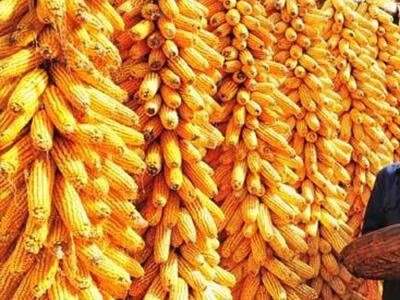 玉米再涨400元/吨,该出手时就出手!